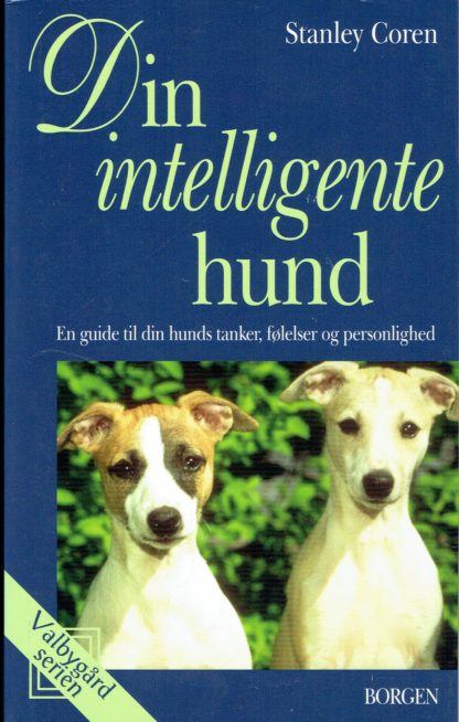 Din intelligente hund