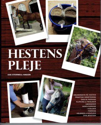 Hestens pleje